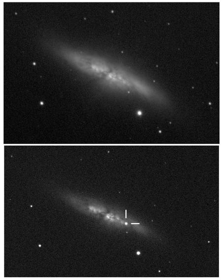 The supernova in M 82 Credit: UCL/University of London Observatory/Steve Fossey/Ben Cooke/Guy Pollack/Matthew Wilde/Thomas Wright